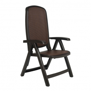 Delta reclining chair - coffee