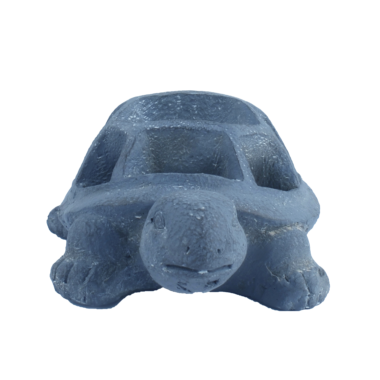 Tortoise Planter Blue Iron Effect